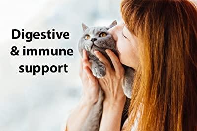 DrFormulas Nexabiotic Probiotics for Cats