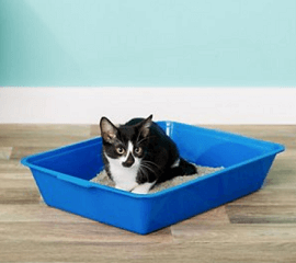 Fresh Step for Pets Plastic Disposable Litter Box