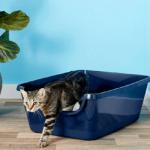 Frisco High Sided Cat Litter Box