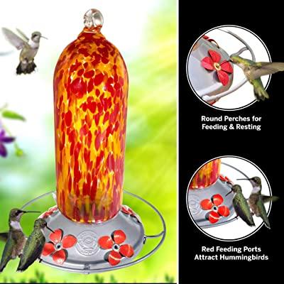 Grateful Gnome - Hummingbird Feeder