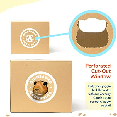GuineaDad Crunchy Condo Hideaway Hideout (Pack of 3)