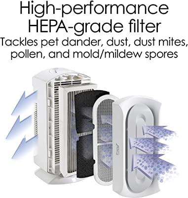 Hamilton Beach TrueAir Specialized Pet & Odor Eliminator Purifier