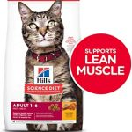 Hill's Science Diet Adult Chicken Recipe Dry Cat Food