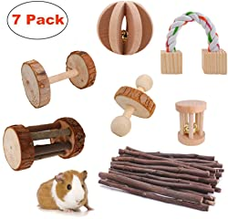 JanYoo Guinea Pig Toys Chinchilla Hamster Roller Rat Chews Toys