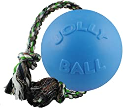 Jolly Pets: Rope and Ball Tug Toy