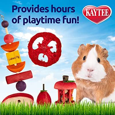 Kaytee Chew & Treat Toy Assortment for Guinea Pigs