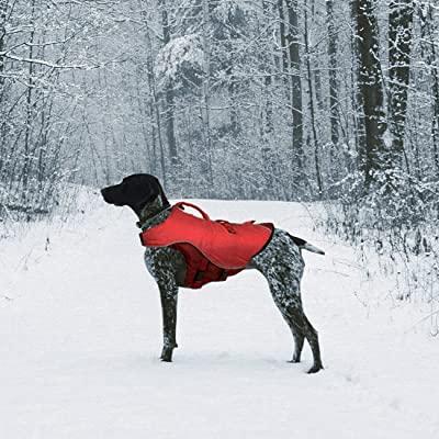 Kurgo Dog Water Life Jacket