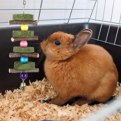 Liiyzy Hamster Chew Toys