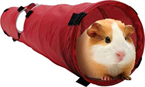 Living World Small Animal Tunnel