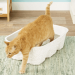 Nature's Miracle Disposable Cat Litter Box