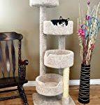 New Cat Condos 190209 Large Cat Tower