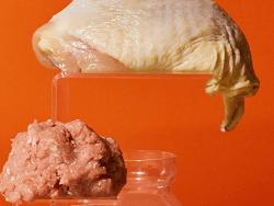 Smalls Freeze-Dried Turkey
