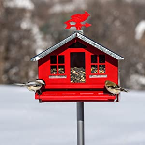 Perky-Pet Squirrel-Be-Gone II Country House Bird Feeder