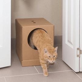 PetSafe Disposable Collapsible Litter Box