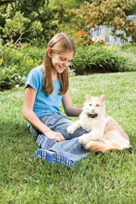 PetSafe Premium In-Ground Cat Fence