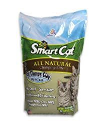 Pioneer Pet SmartCat Unscented Clumping Grass Cat Litter
