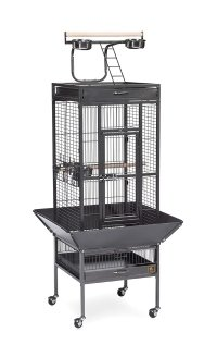 Prevue Hendryx Pet Products Wrought Iron Select Bird Cage
