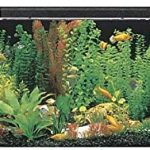 SeaClear 50 gal Acrylic Aquarium Combo Set