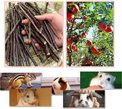 Sharllen Apple Sticks Chew Toys