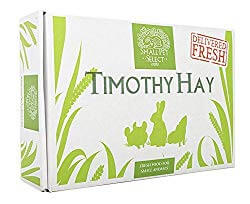 Small Pet Select 2nd Cutting Timothy Hay Pet Food