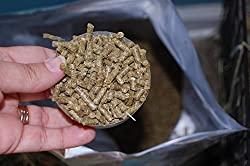 Small Pet Select Guinea Pig Food Pellets