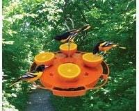 Songbird Essentials SE905 Ultimate Oriole Feeder