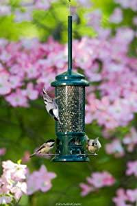 Squirrel Buster Standard Squirrel-proof Bird Feeder w/4 Metal Perches