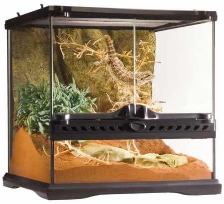 Exo Terra Glass Terrarium Kit