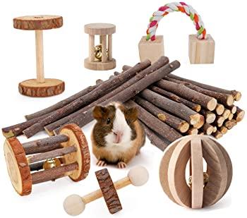JanYoo Hamster Chews Toys