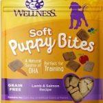 Wellness Cat Food