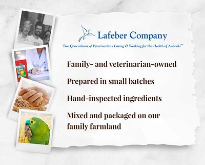 Lafeber Classic Avi-Cakes Parrot Food