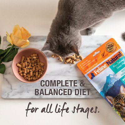 Feline Natural Chicken & Lamb Feast Grain-Free Freeze-Dried Cat Food