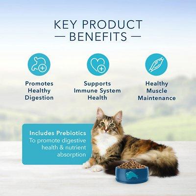 Blue Buffalo Sensitive Stomach Chicken Recipe Adult Dry Cat Food