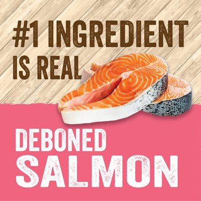 EVOLVE Classic Deboned Salmon, Rice & Sweet Potato Formula Dry Food
