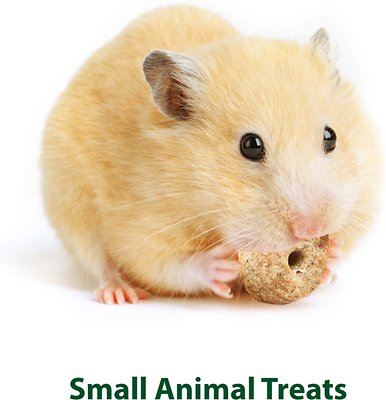 Kaytee Baked Apple Timothy Biscuit Small Animal Treats