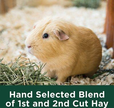 Kaytee Natural Timothy Hay Small Animal Food