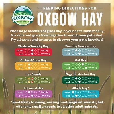 Oxbow Alfalfa Hay Small Animal Food