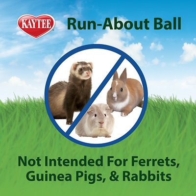 Kaytee Run-About Small Animal Exercise Ball