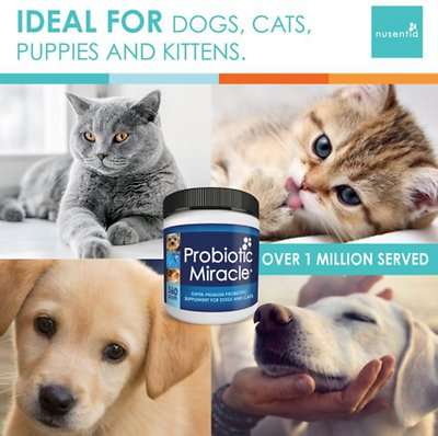 Nusentia Probiotic Miracle Premium Blend Dog & Cat Supplement