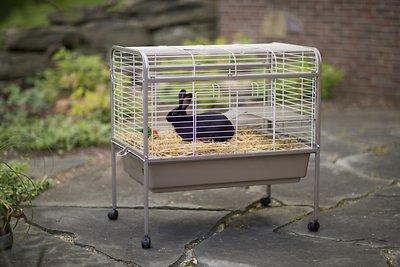 Prevue Pet Products Small Animal Cage, Coco & White