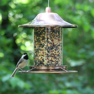 Perky-Pet Panorama Bird Feeder