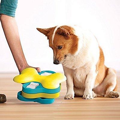 Nina Ottosson by Outward Hound Tornado Puzzle Game Dog Toy