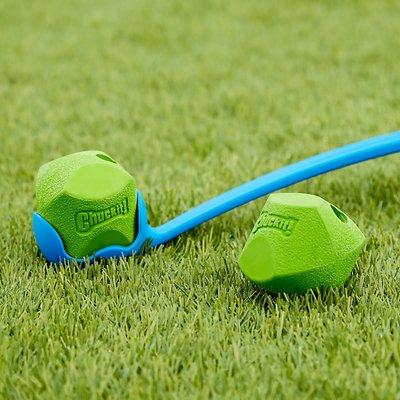 Chuckit! Erratic Ball Dog Toy