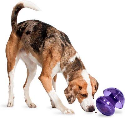 Busy Buddy Magic Mushroom Treat Dispenser Dog Toy