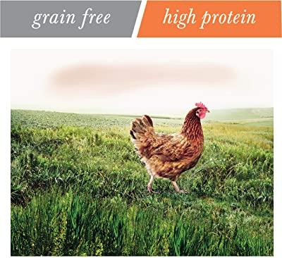 NUTRO Wild Frontier Indoor Adult Open Valley Recipe Chicken Flavor High-Protein Grain-Free Dry Food