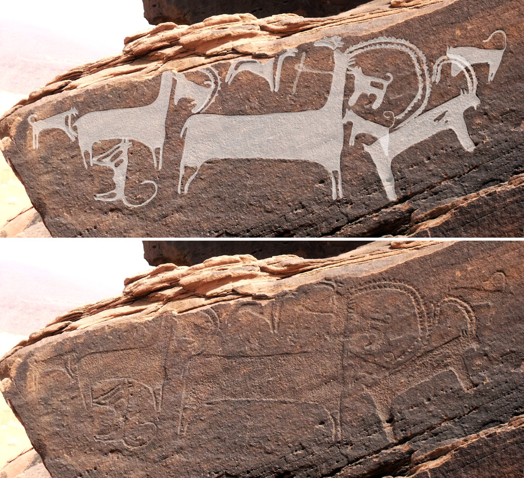 The Earliest Depiction of Dogs Is Rock Art That Is 8000 Years Old